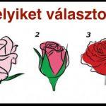 Pszichológiai teszt: válassz egy rózsát és ismerd meg önmagad