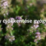Testsúly csökkentése gyógyteákkal (Szabó Gyuri bácsi)